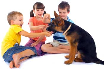 Children at Adolescent Dog Play Group