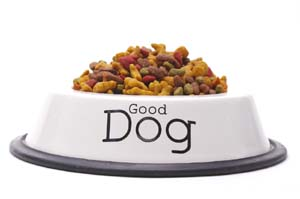 Train Away Dog Food Behaviours