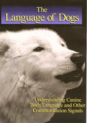 Sarah Kalnajs The Language of Dogs